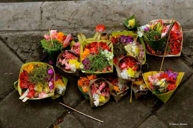 canang-sari-on-balinese-street-c2a9-tricia-mitchell.jpg