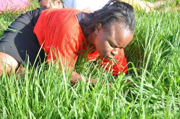 woman-eats-grass-rabboni-centre-ministries-south-africa.jpg