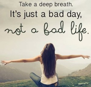 Not-a-Bad-Life-300x287